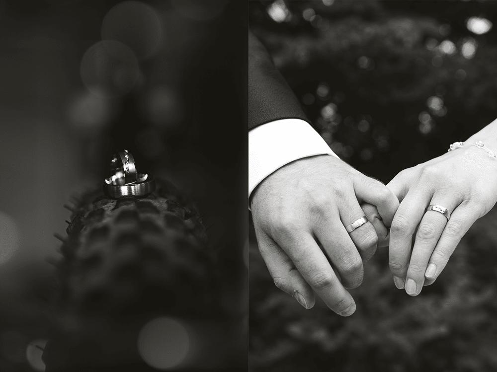Hochzeitsringe-Ringe-Hochzeit-Schmuck-Hochzeitsfotos-Hochzeitsfotograf-Fotograf-Bayreuth-Bamberg-Coburg-Weiden-Fürth-Erlangen-nürnberg